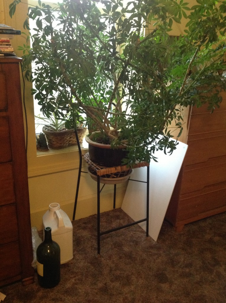Cafe Stool Plant Stand