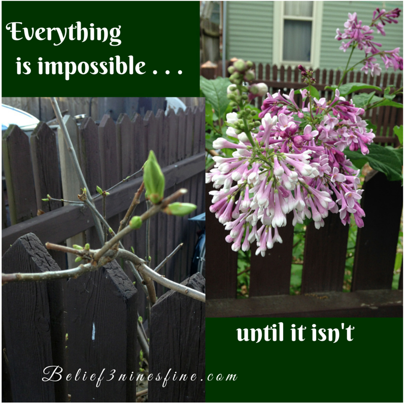 Everything is impossible